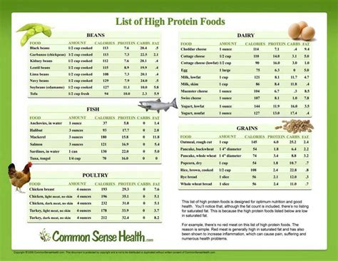 protein food list list of high protein foods healthy munching