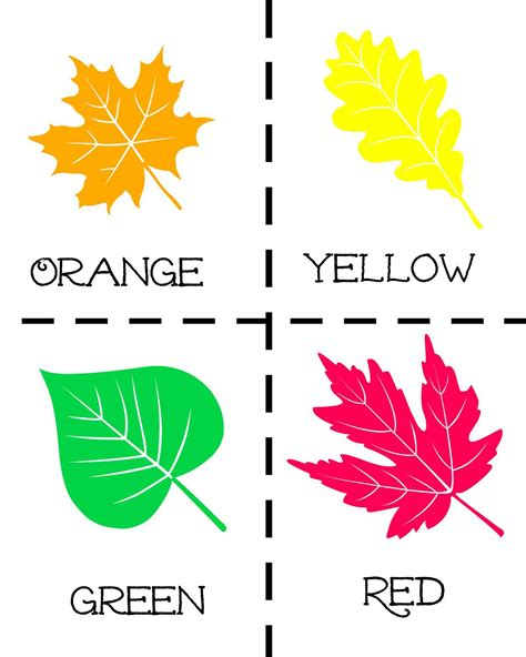 printable preschool leaf activities we re going on a leaf hunt with free printables and math