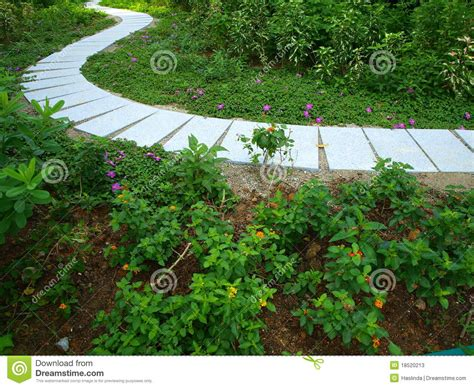 Winding Path Gardens by Winding Path In Garden Stock Photos Image 18520213