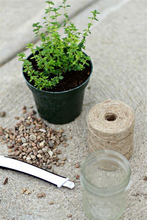 wall mounted wooden kitchen herb planter kit with seeds ikea hanging plant holder diy herb garden box kitchen herb