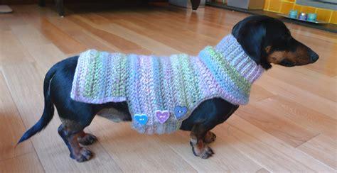 pattern for dachshund dog coat crochet dog sweater pattern dachshund crochet and knit