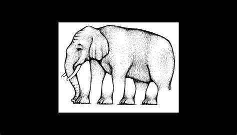 imagenes de ilusiones visuales 161 enga 241 osas 10 ilusiones 243 pticas que desaf 237 an tu cerebro