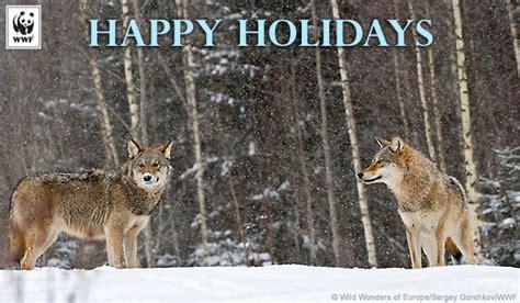 send holiday ecards  christmas hanukkah  kwanzaa world wildlife fund