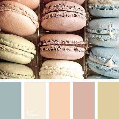 macaroon colors color palette ideas