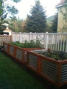 raised garden beds corrugated steel and cedar for my