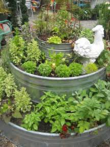 15 Tips for Trough Planters   The Yarden