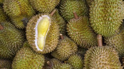 r fruits fattening durians pack a nutritional punch but they are fattening