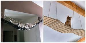 Terrific interesting cat play room decoration ideas thedogpuppies