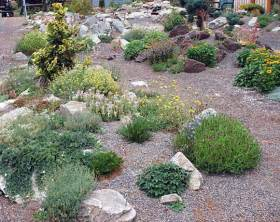 landscape design ideas rock garden