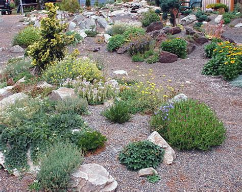 Decorative Gravel Garden Ideas by Rock Garden Design Ideas