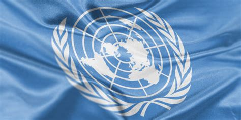 United Nations Nation 23 by United Nations Hearing Will Slam Ireland For Not Killing