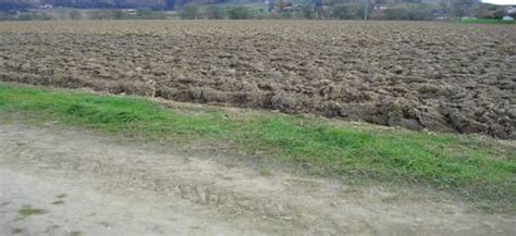 Häuser Kaufen Versteigerung ebenes ackerland mit guter bodenqualit 228 t zu kaufen