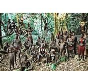 Tribals Of Andaman And Nicobar Islands  Go2Andaman
