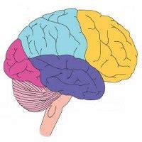 otak lebih suka gambar dan warna