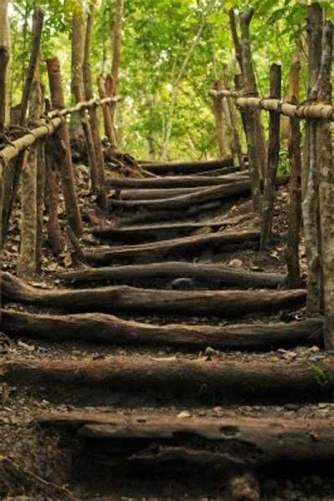 Backyard Steps by Best 25 Garden Stairs Ideas On Garden Steps
