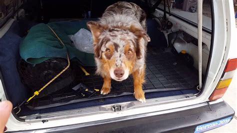 wax rear wiper fix  volvo  wagon restoration part  youtube