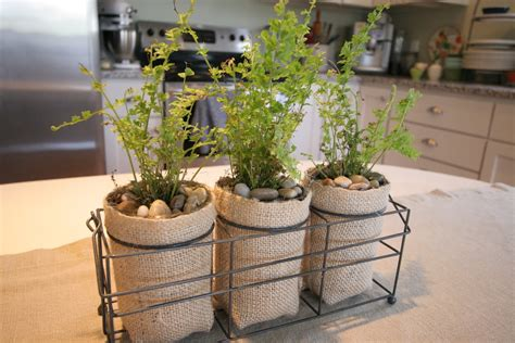 Make Plant - cass house plant pots