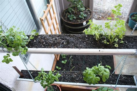 Gutter Garden by 13 Creative And Innovative Gutter Garden Ideas The