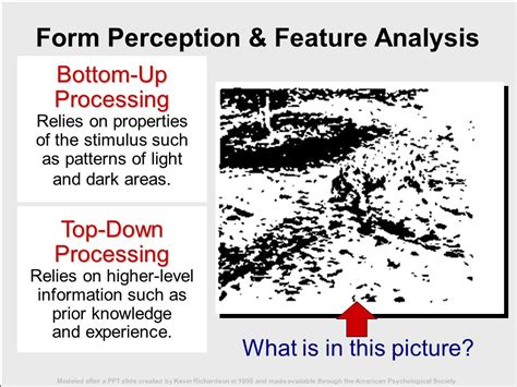 top down versus bottom up perception ppt video online