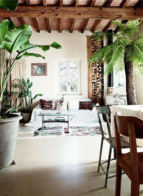 exotic home decor green extravaganza plants in home decor
