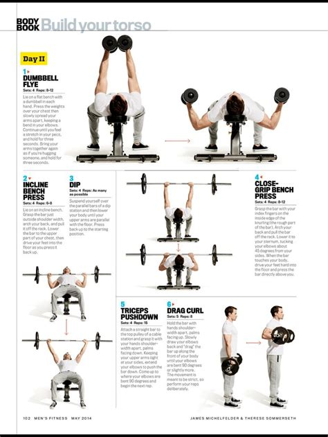 bench press shrug incline bench shrugs 28 images build your torso dumbbell flye incline bench press