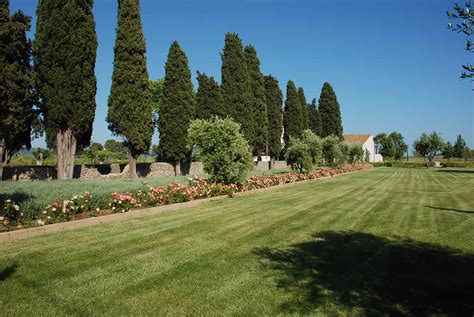 progettazione giardini roma progettazione giardini roma