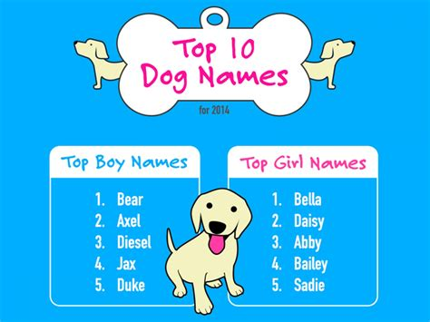 best names for dogs best dogs for families breeds picture