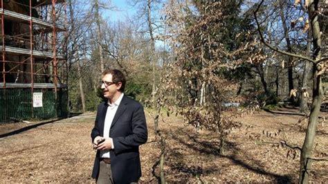 ufficio igiene saronno agronomi e forestali a varese per la tutela degli alberi