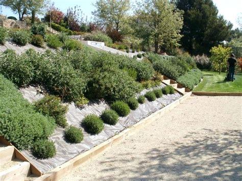 aménagement talus en pente 602 jardin pente amenagement