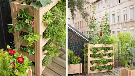 orto in terrazza come fare orto in terrazza orto in balcone coltivare orto in