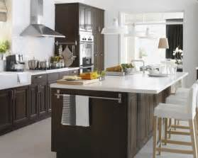 Ikea Kitchen Cabinets Design by 11 Amazing Ikea Kitchen Designs Interior Fans