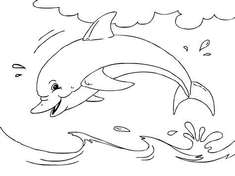 imagenes de animales marinos para imprimir dibujos de delfines para colorear imagui