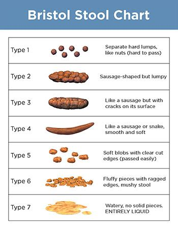 Bristol Stool Color Chart by Bristol Stool Chart Jersey Shore Gastro