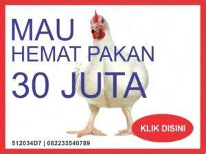 Suplemen Pakan Ayam Broiler bahan alami untuk pakan alternatif ayam broiler ayam