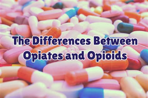 Opioid Detox Near Me by What Are The Differences Between Opiates And Opioids