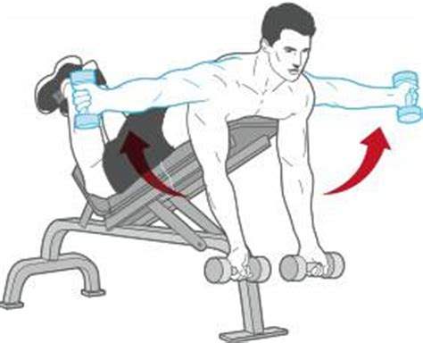 dumbbell bench workout routine trainer the january program