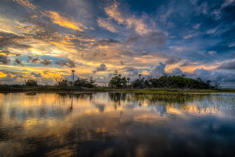 marsh south carolina photographer patrick o brien
