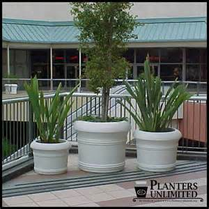 large commercial fiberglass planters outdoor or indoor