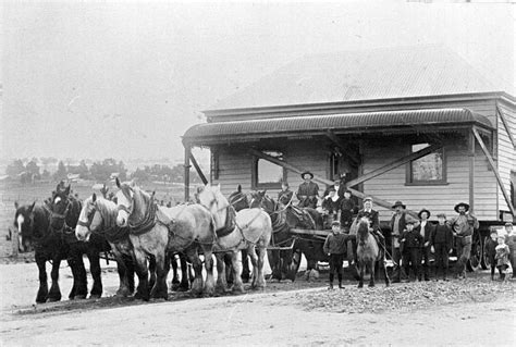 house movers victoria negative horse team moving a house from creswick through allendale victoria circa 1909