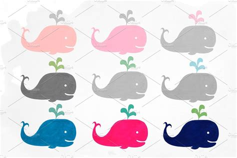 baby whale clipart baby whale clipart cilpart
