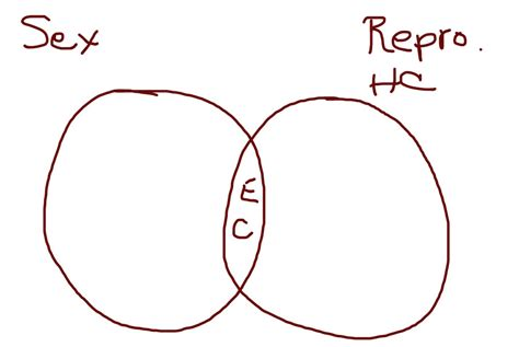 what s a venn diagram what s really wiggy about plan b redbone afropuff and