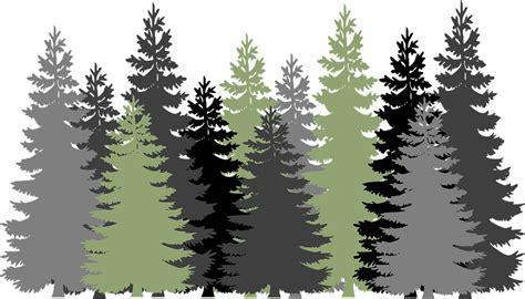 Evergreen Tree Clip coniferales clipart clipground