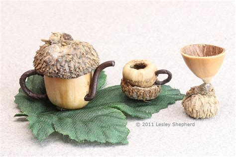 acorn dolls house use acorns or hazlenuts to make a miniature tea set