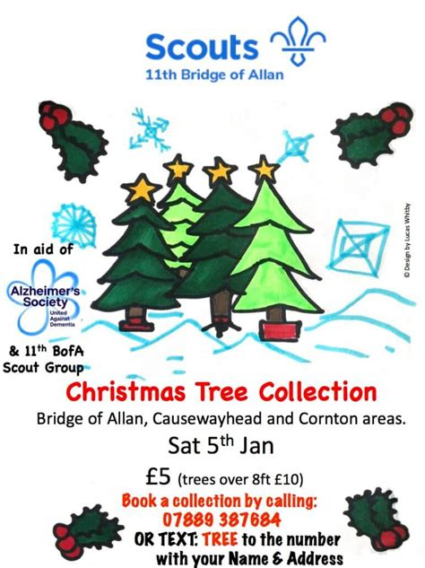 boroondara council collection for christmas trees scout tree collection bridge of allan community council