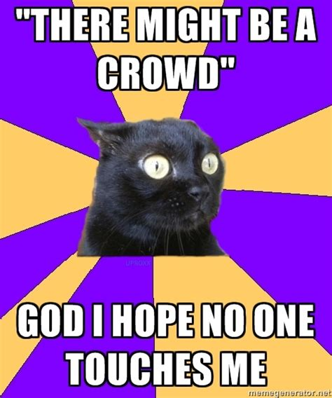 Anxiety Cat Memes - 107 best images about anxiety cat making me nervous on