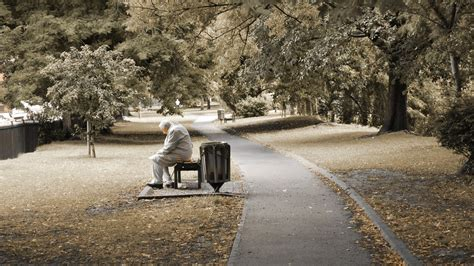 sitting on a park bench lyrics old grey haired waitresses in cafes at night