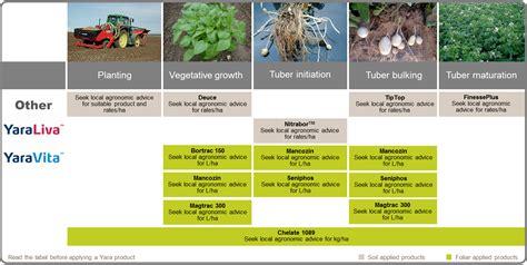 potato fertilizer program yara