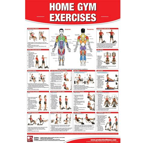 laminated basic exercise fitness poster