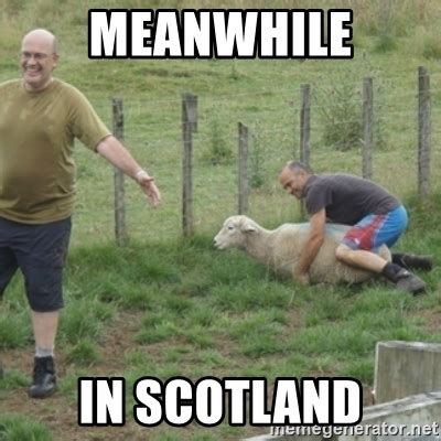 Meanwhile In Scotland Meme - meanwhile in scotland sheep shagger meme generator