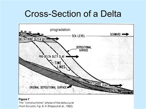 Cross Section Of A River by Marginal Marine Environments Ppt